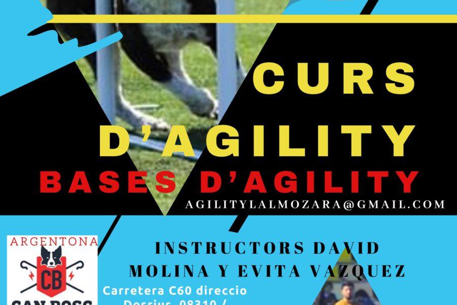 Curso Agility L'Almozara Can Bosc / 18 de junio